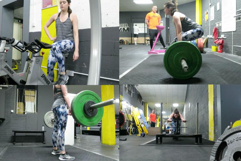 FitnessFiles