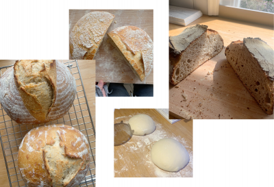 Mark's Guide To Baking Bread & How To Make Sourdough Starter